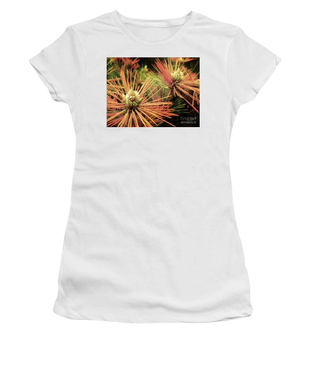Winter Women's T-Shirt (Athletic Fit) featuring the photograph Winter Details by Tara Turner