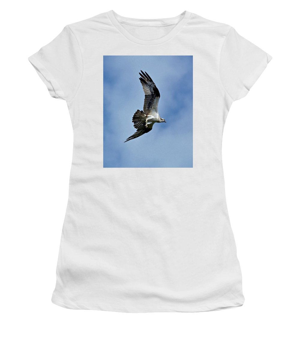 Flying Women's T-Shirt (Athletic Fit) featuring the photograph Flying High by Carol Bradley