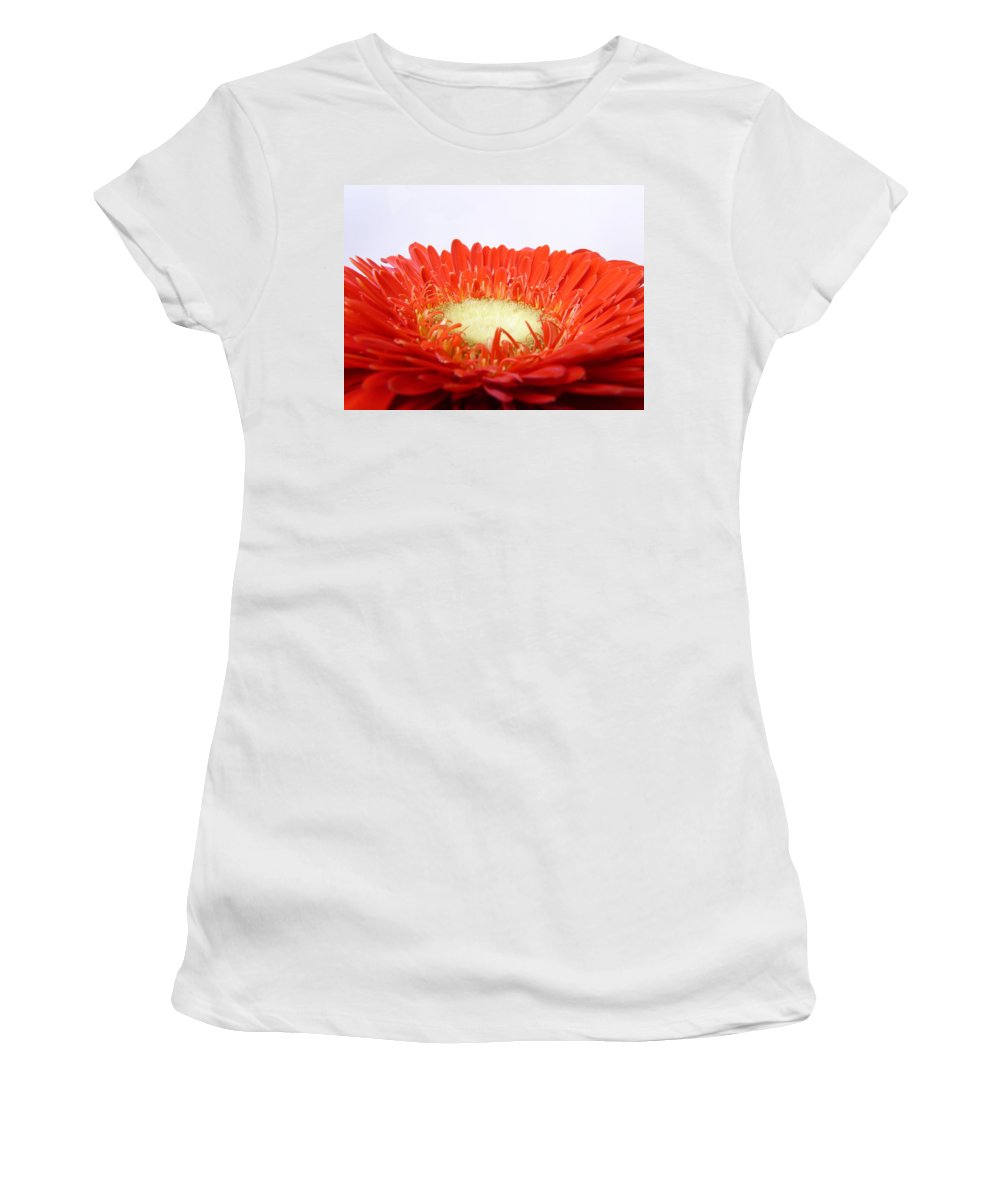 Gerbera Women's T-Shirt (Athletic Fit) featuring the photograph Gerbera by Daniel Csoka