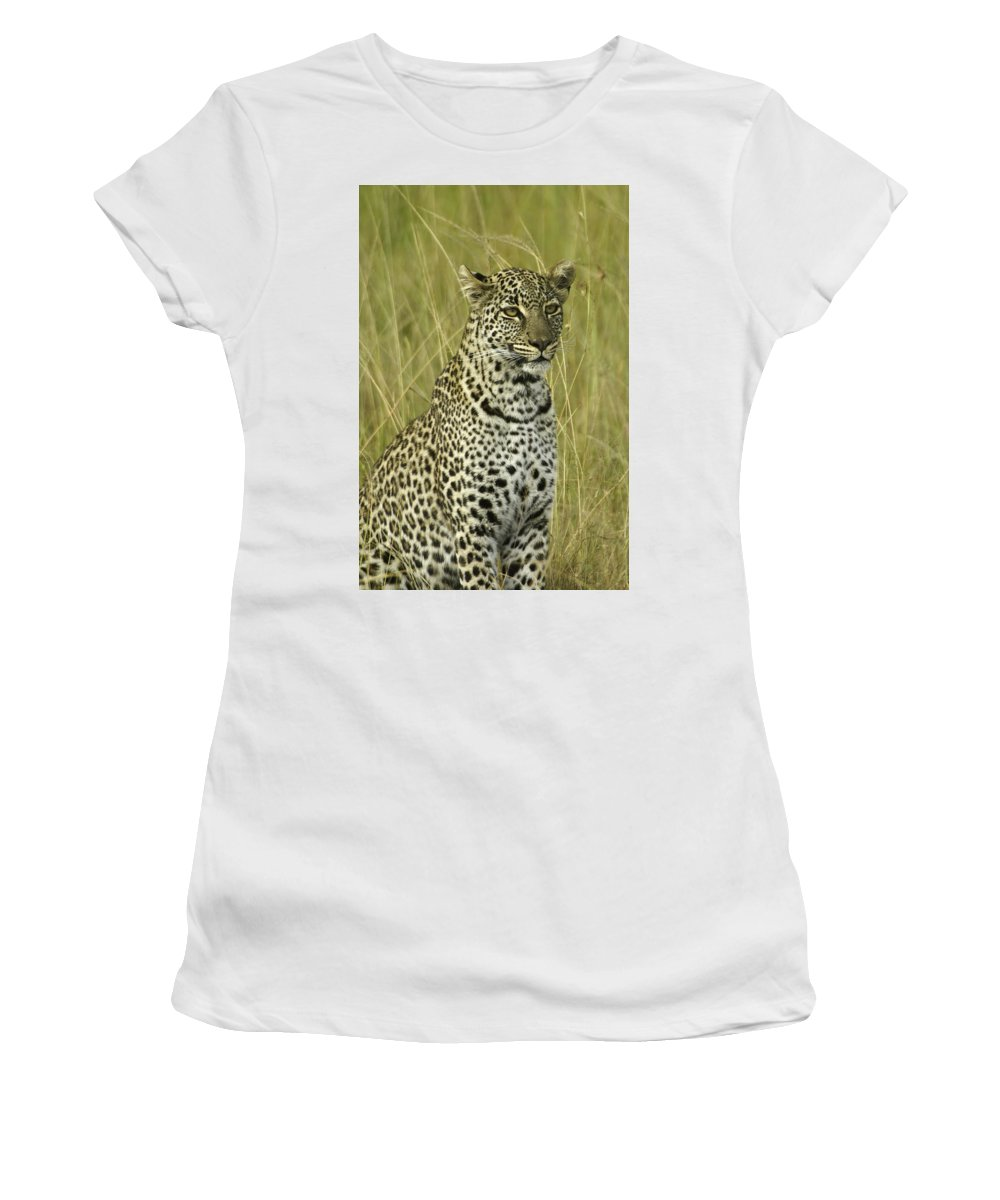 Africa Women's T-Shirt (Athletic Fit) featuring the photograph Lovely Leopard by Michele Burgess