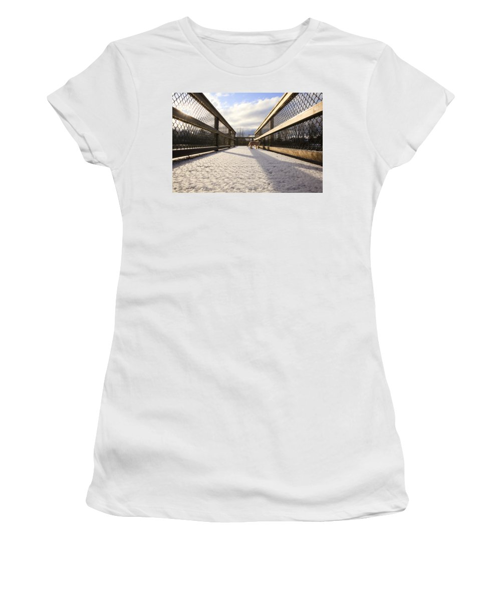 Dog Women's T-Shirt featuring the photograph A Dog's Eye View by Monte Arnold