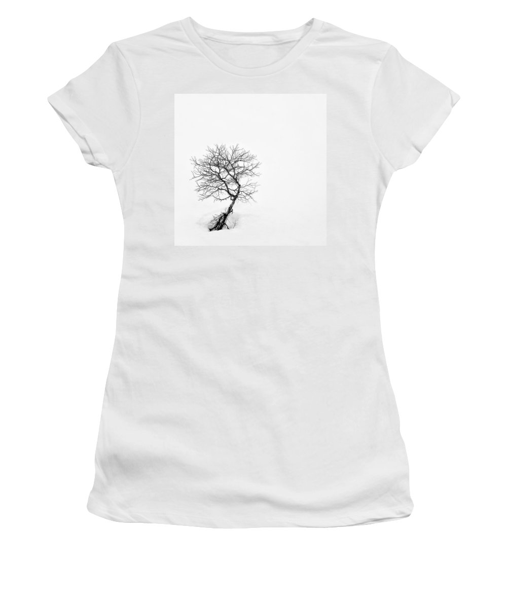 One Tree Women's T-Shirt (Athletic Fit) featuring the photograph A Simple Tree by Dave Bowman