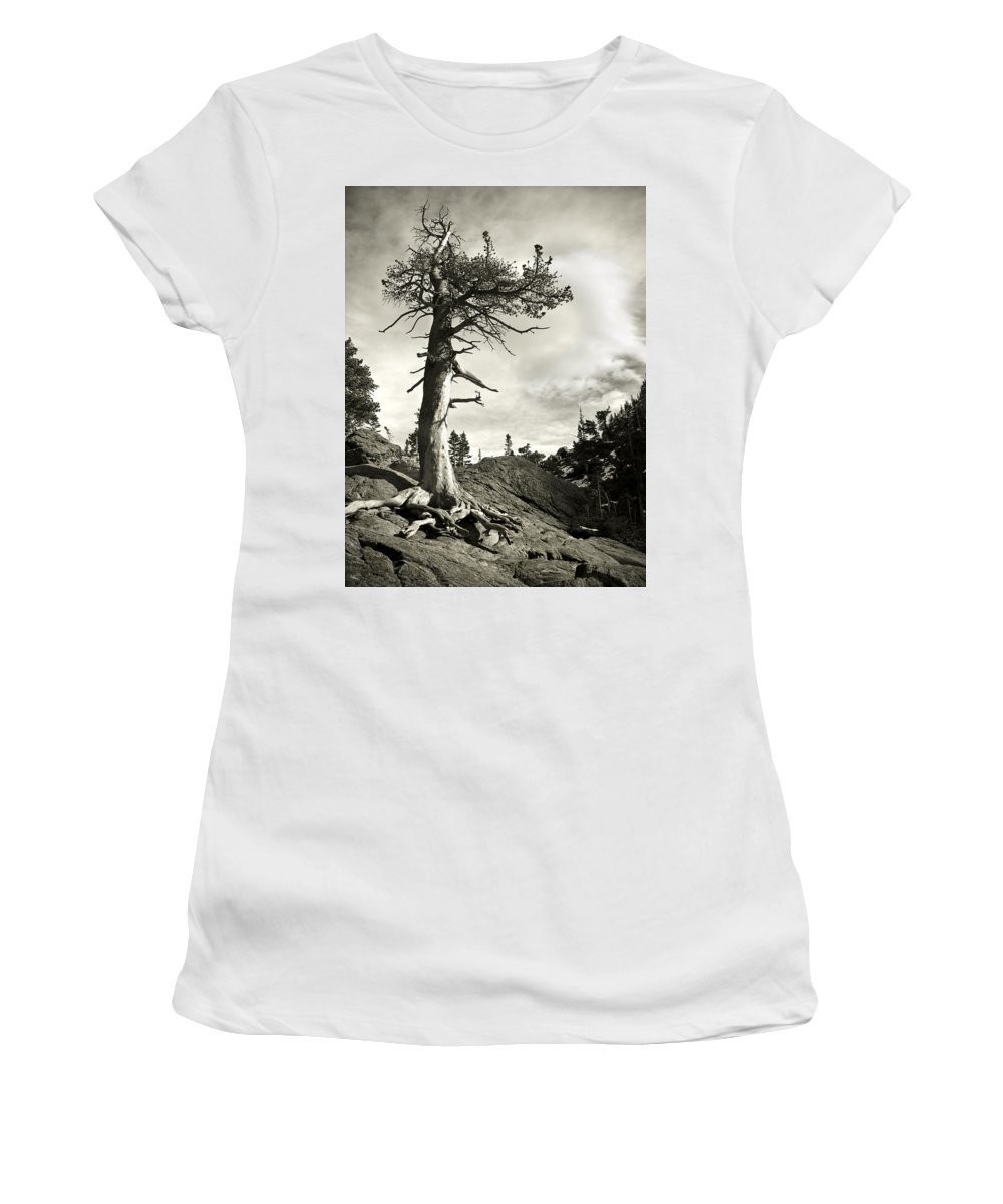 Tree Women's T-Shirt (Athletic Fit) featuring the photograph A Tough Life by Marilyn Hunt