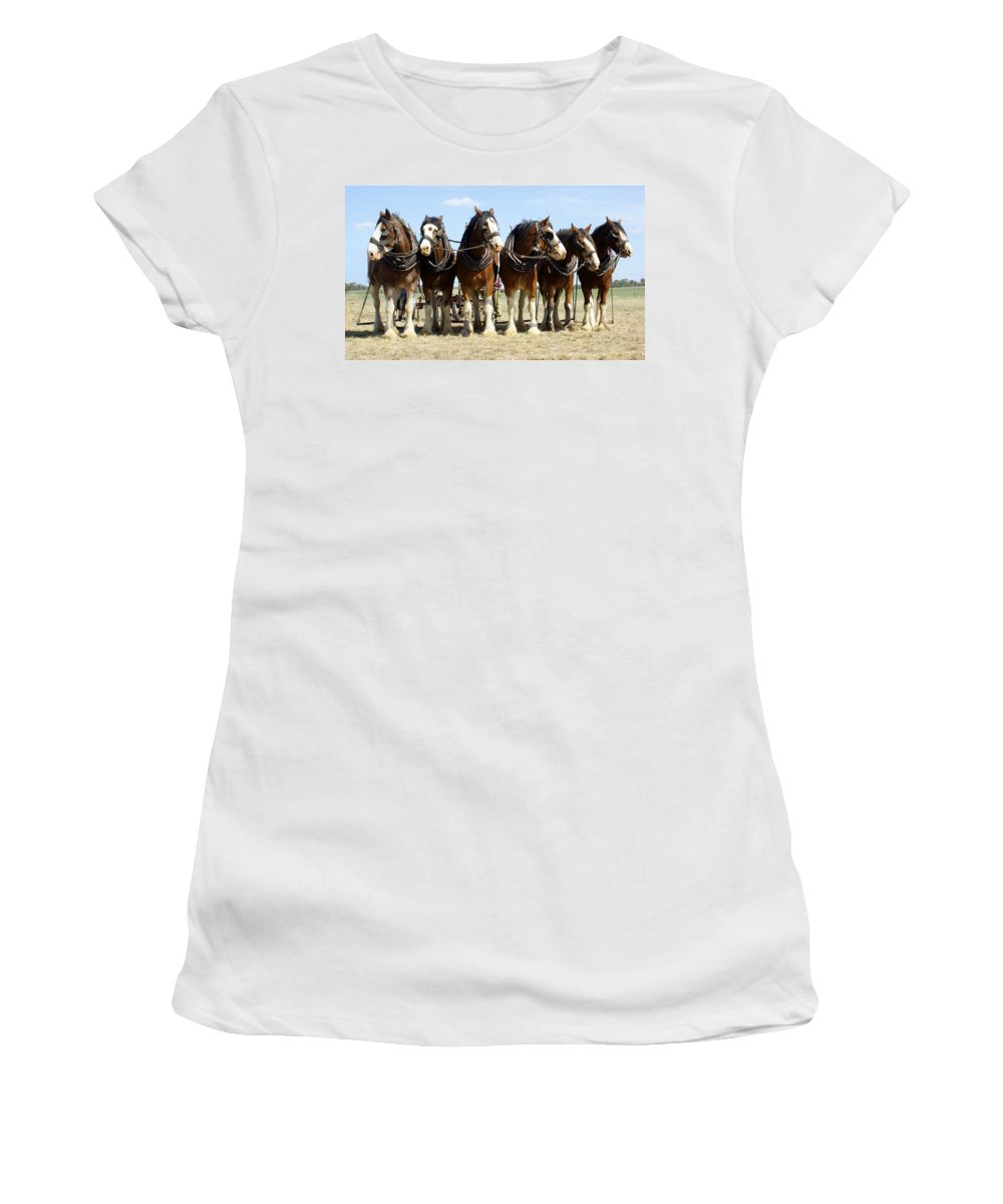 Kathryn Potempski Women's T-Shirt featuring the photograph A Working Day by Kathryn Potempski