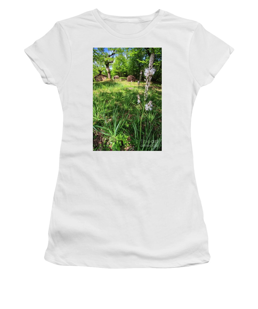 Wood Women's T-Shirt (Athletic Fit) featuring the photograph Asphodelus II by Alessandro Landi