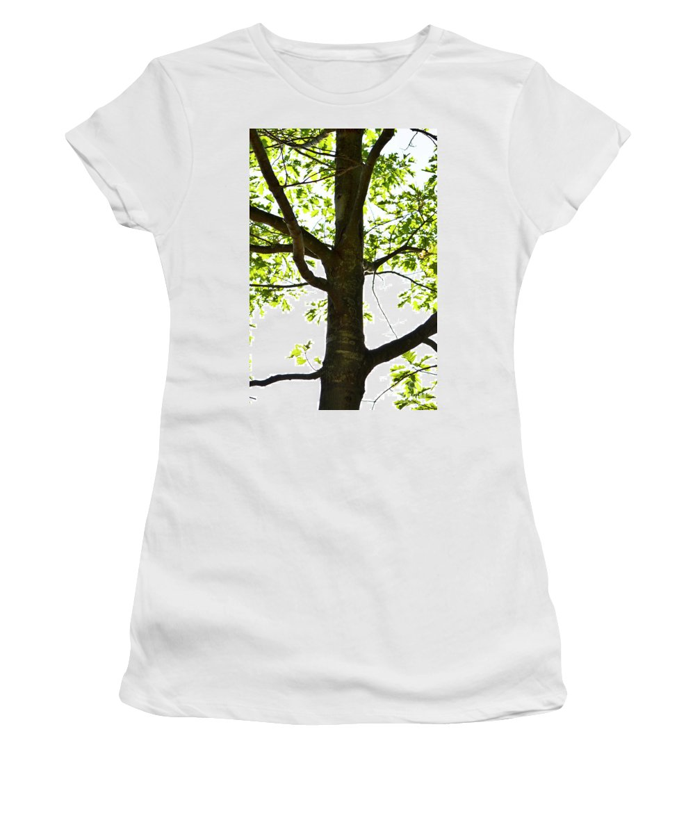 Tree Women's T-Shirt featuring the photograph Beach Tree by Traci Cottingham