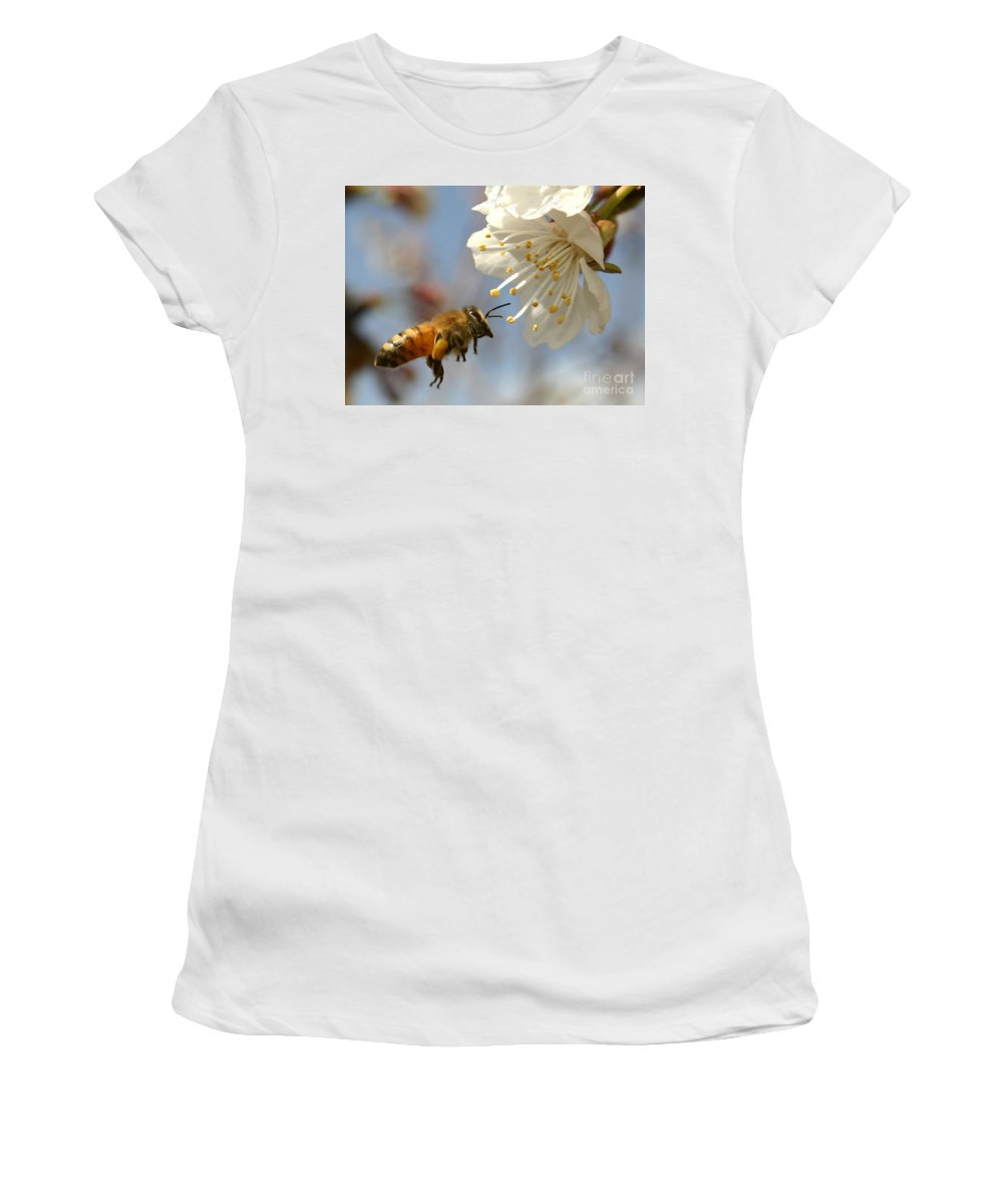 Honey Women's T-Shirt (Athletic Fit) featuring the photograph Bee And A Blossom by Danny Yanai