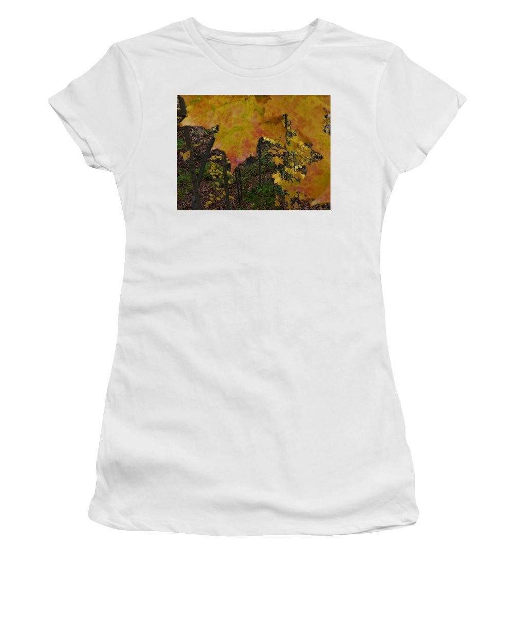 Spencer Gorge Ontario Autumn Leaves Yellow Orange Women's T-Shirt featuring the photograph Before The Fall by The Sangsters