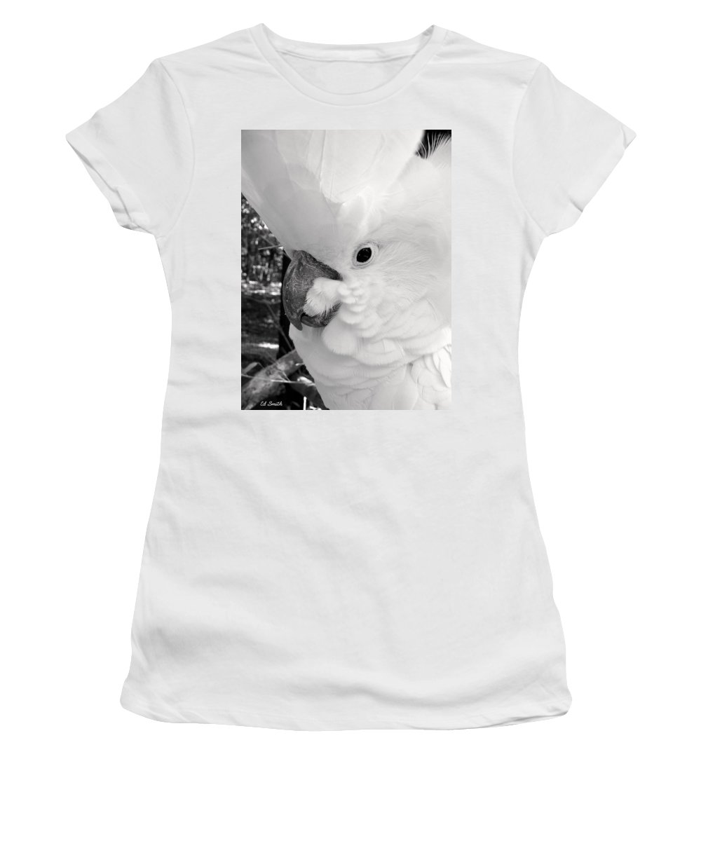 Big Chief Women's T-Shirt (Athletic Fit) featuring the photograph Big Chief by Ed Smith