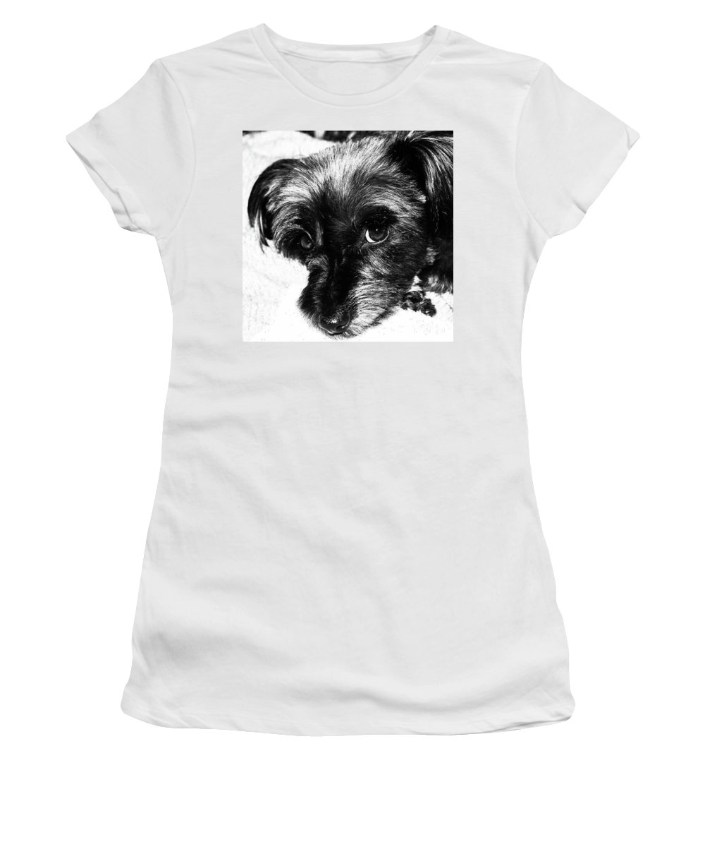 Dog Women's T-Shirt (Athletic Fit) featuring the photograph Black Dog Looking At You by Josephine Cleopahrt