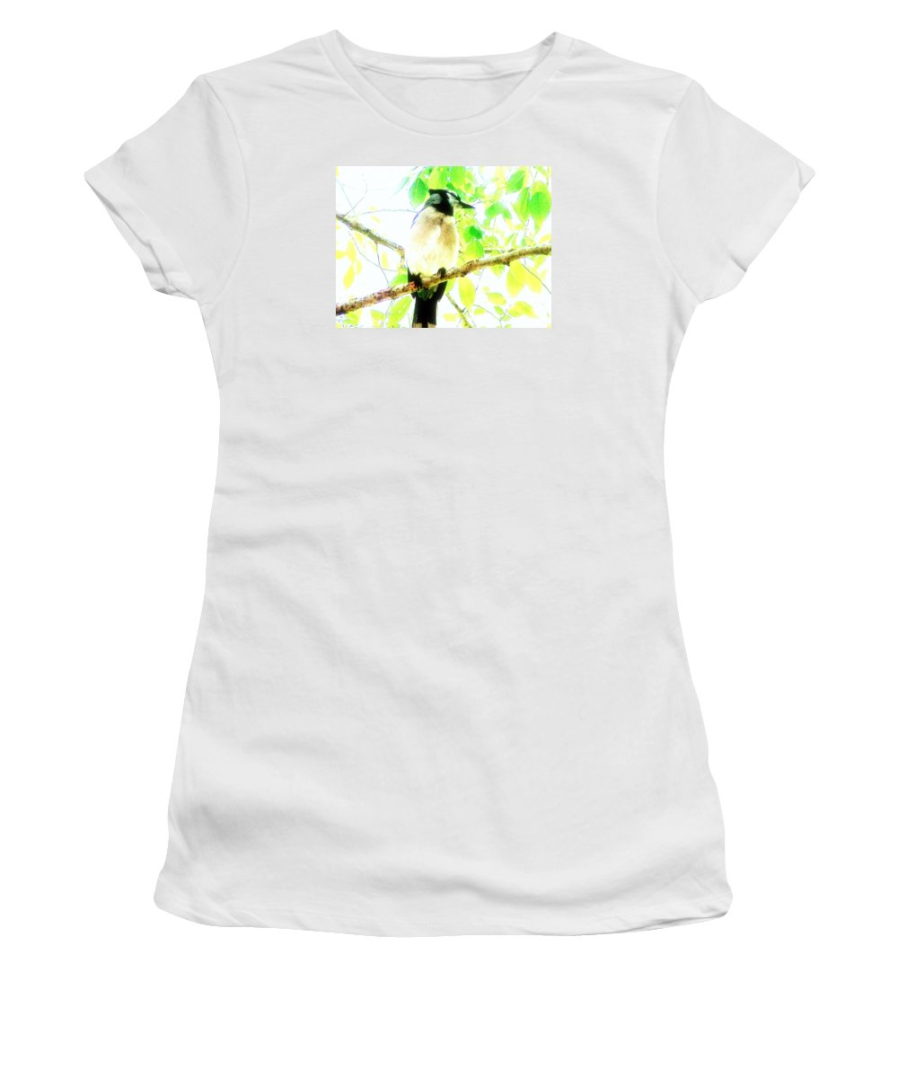 Bluejay Women's T-Shirt featuring the photograph Blue Jay IIi by Clarice Lakota