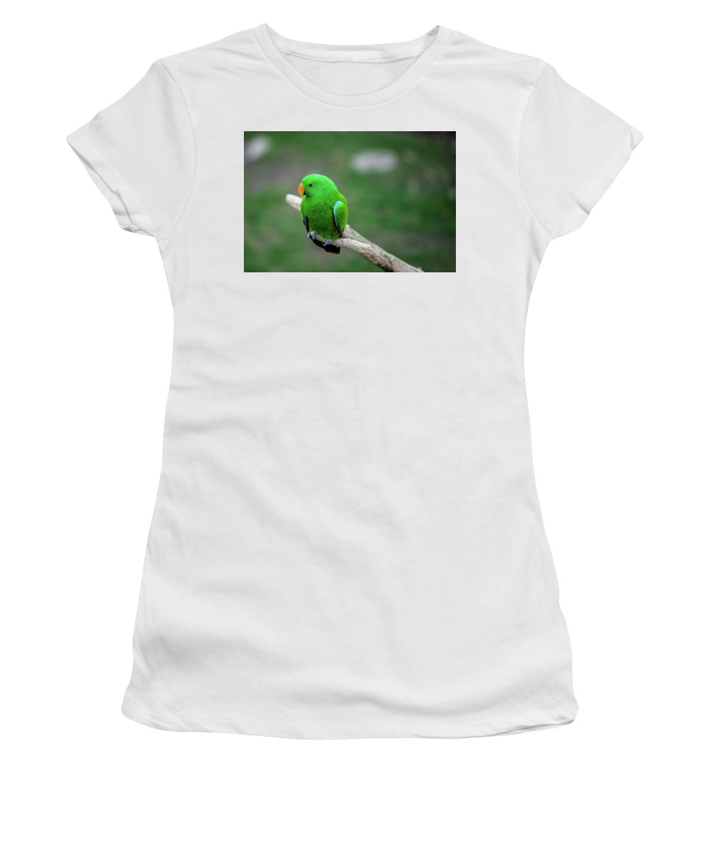 Beak Women's T-Shirt (Athletic Fit) featuring the photograph Bright Green Parrot by Bud Bartnik