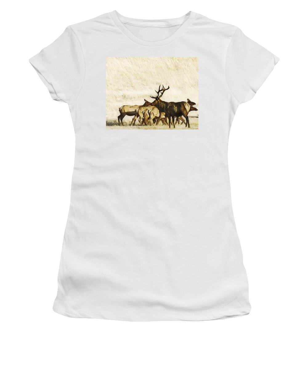 Landscape Women's T-Shirt (Athletic Fit) featuring the photograph Bull Elk by Karen W Meyer