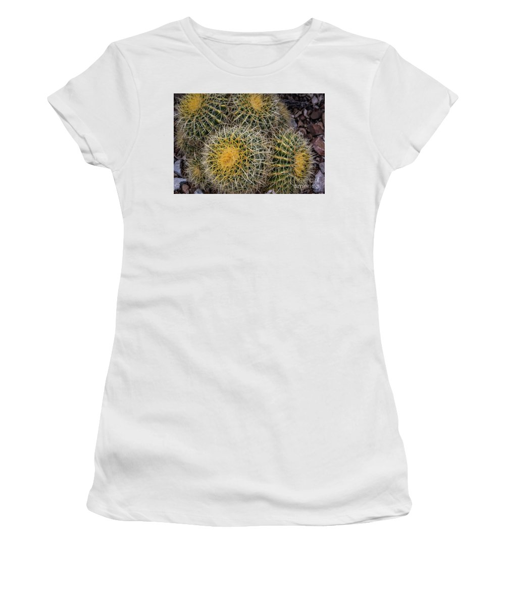 Arid Women's T-Shirt (Athletic Fit) featuring the photograph Cactus Hay by David Levin