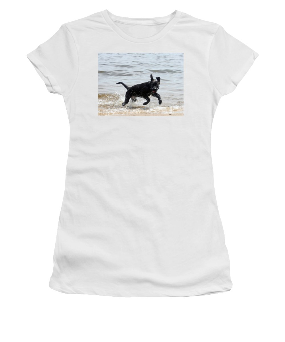 Dog Women's T-Shirt (Athletic Fit) featuring the photograph Catch Me If You Can by Lisa Stanley