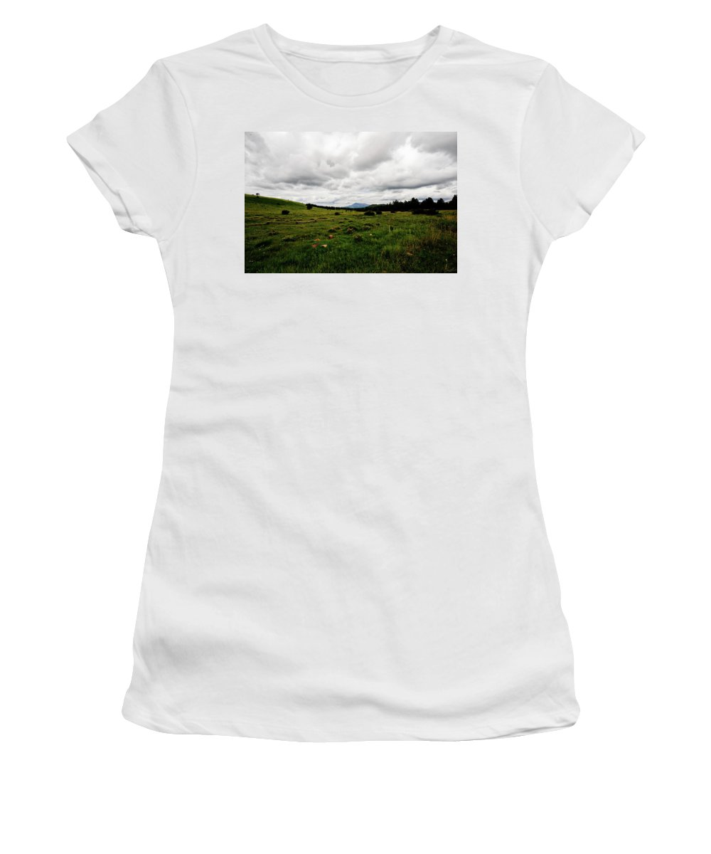 Flowers Women's T-Shirt featuring the photograph Cloudy Meadow by Scott Sawyer