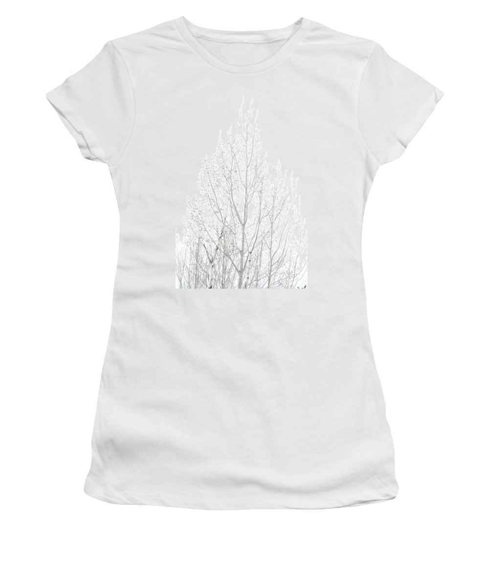 Birch Women's T-Shirt (Athletic Fit) featuring the photograph Cold Birch by Monte Arnold