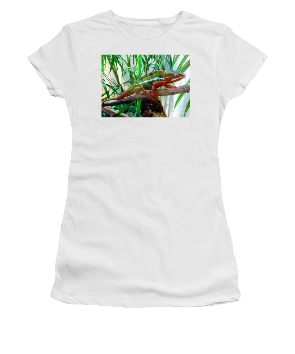 Chameleon Women's T-Shirt (Athletic Fit) featuring the photograph Colorful Chameleon by Nancy Mueller