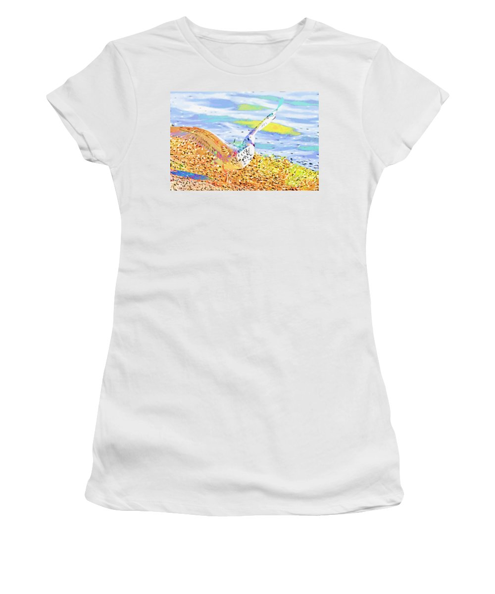 Seagull Women's T-Shirt featuring the photograph Colorful Seagull by Deborah Benoit