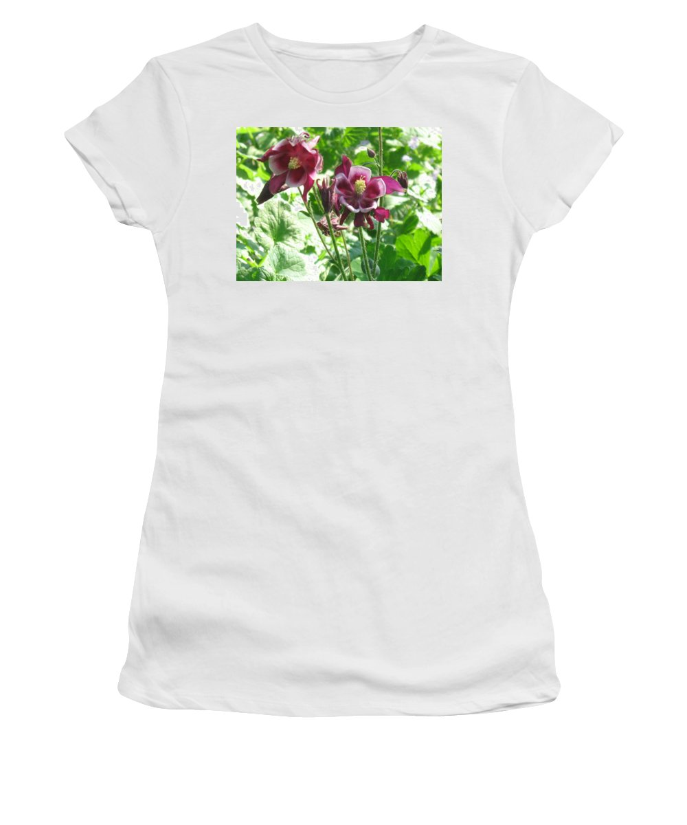 Nature Women's T-Shirt (Athletic Fit) featuring the photograph Columbine #2 by Rose Dellinger