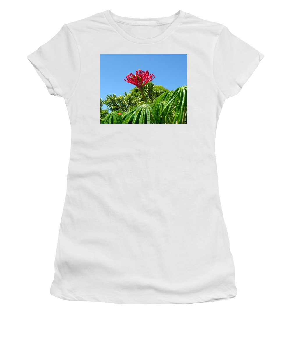 Coral; Bush; Coralbush; Weed; Flower; Leaf; Leaves; Fruit; Nut; Seed; Florida; Wild; Vacant; Lots; N Women's T-Shirt (Athletic Fit) featuring the photograph Coral Bush With Flower And Fruit by Allan Hughes