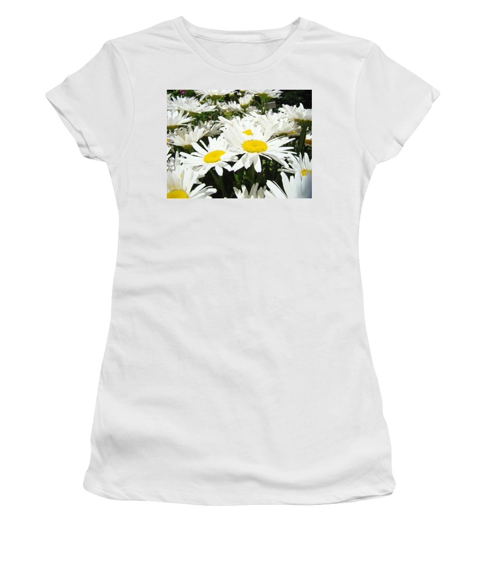 Daisy Women's T-Shirt featuring the photograph Daisies Floral Landscape Art Prints Daisy Flowers Baslee Troutman by Baslee Troutman