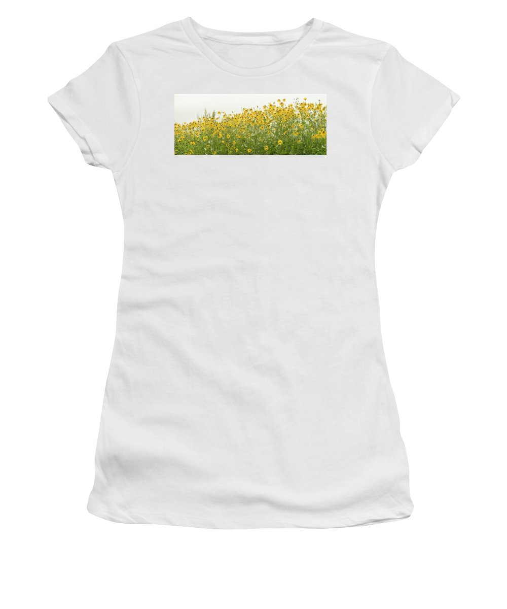 Daisies Women's T-Shirt (Athletic Fit) featuring the photograph Daisies by Thomas Byrne