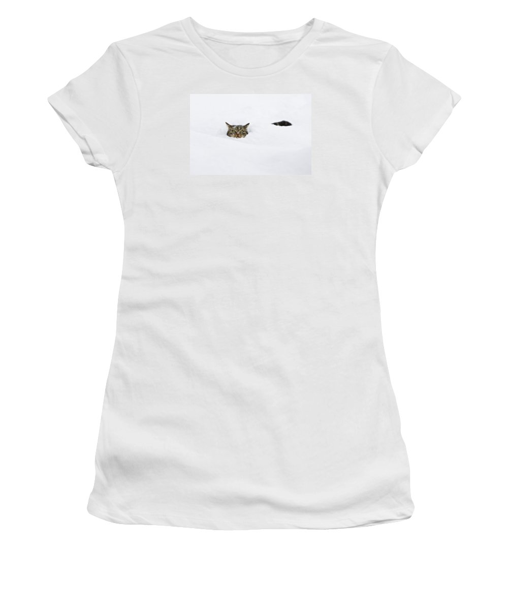 Mp Women's T-Shirt featuring the photograph Domestic Cat Felis Catus In Deep Snow by Konrad Wothe