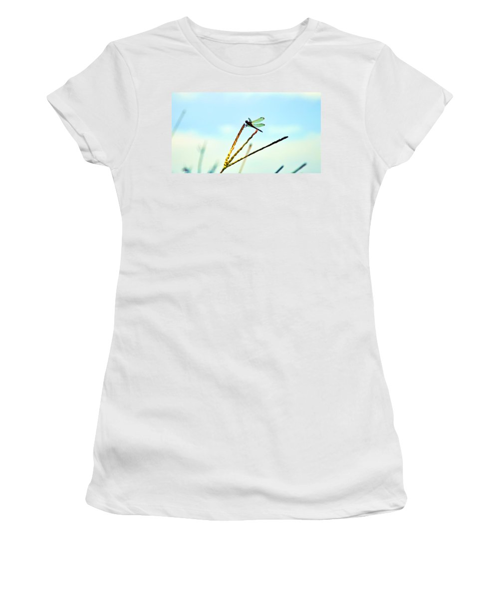 Jamestown Women's T-Shirt (Athletic Fit) featuring the photograph Dragon Fly by Bill Cannon