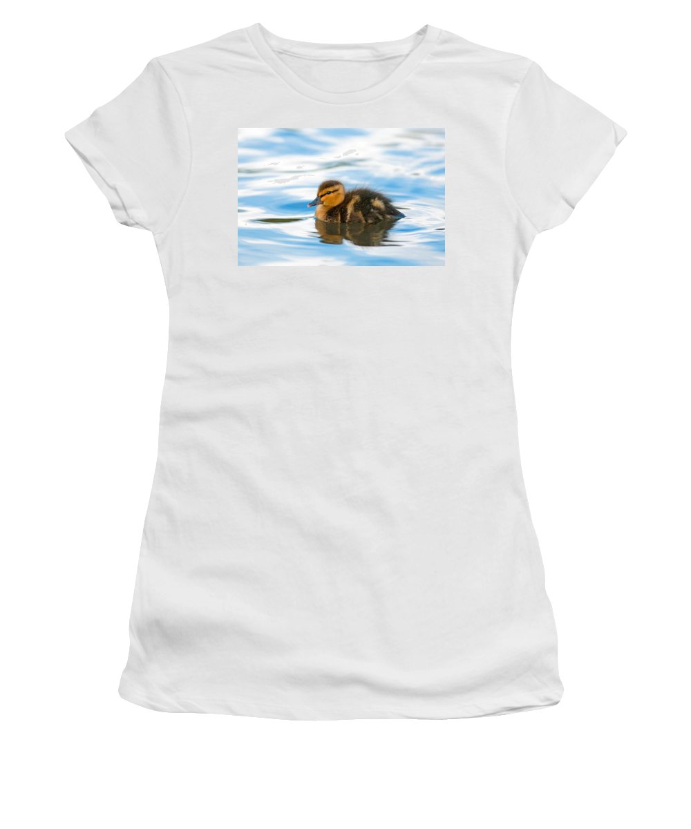 Mallard Duck Women's T-Shirt (Athletic Fit) featuring the photograph Duckling by Randall Ingalls