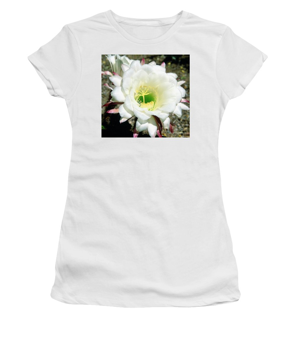 Wildflowers Women's T-Shirt (Athletic Fit) featuring the photograph Easter Lily Cactus Flower by Kathy McClure