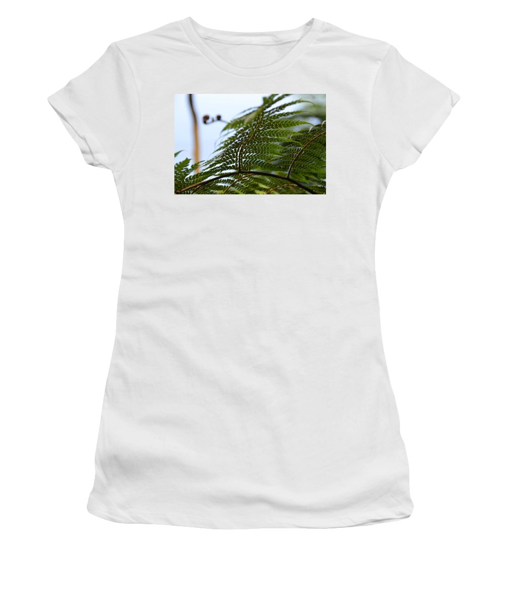 Saba Women's T-Shirt featuring the photograph Fern Tree Frond by Ingrid Zagers