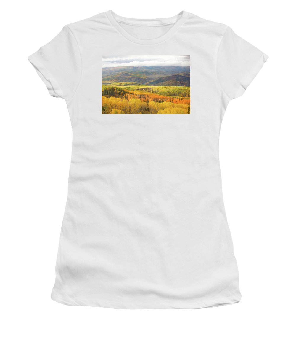 Aspen Women's T-Shirt (Athletic Fit) featuring the photograph Fiery Aspen Grove by Erica Turner