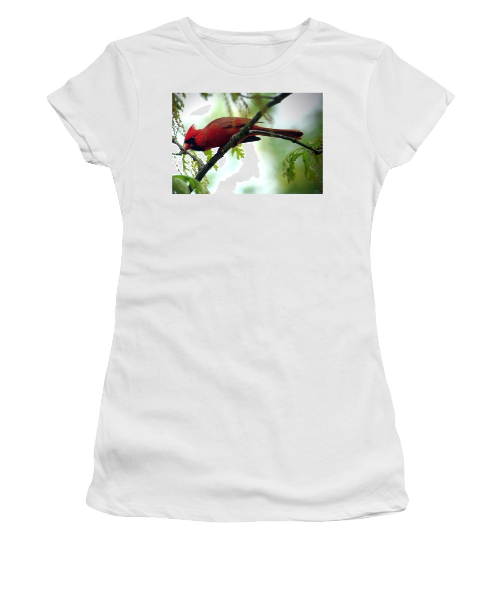 Jenny Gandert Women's T-Shirt featuring the photograph Flight Preparation by Jenny Gandert