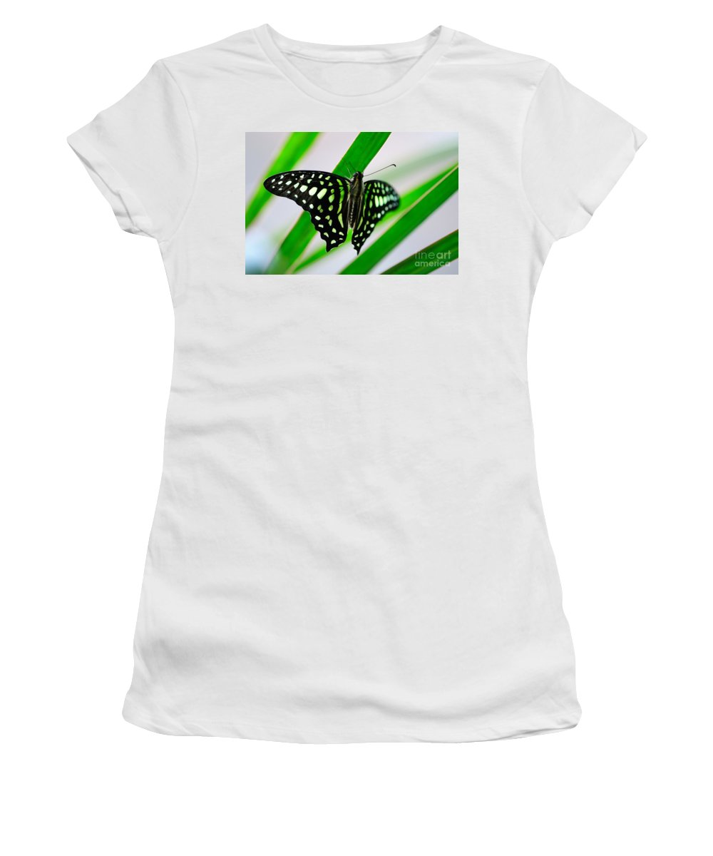 Forest Women's T-Shirt (Athletic Fit) featuring the photograph Forest Queen by Charles Dobbs