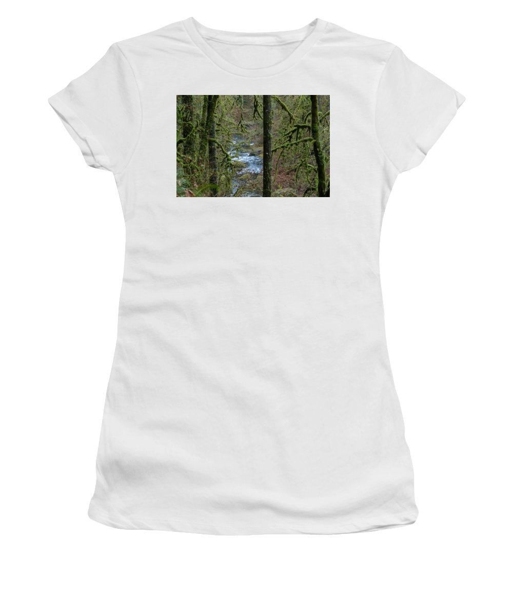 Autumn Women's T-Shirt (Athletic Fit) featuring the photograph Forest Trail by Robert Potts