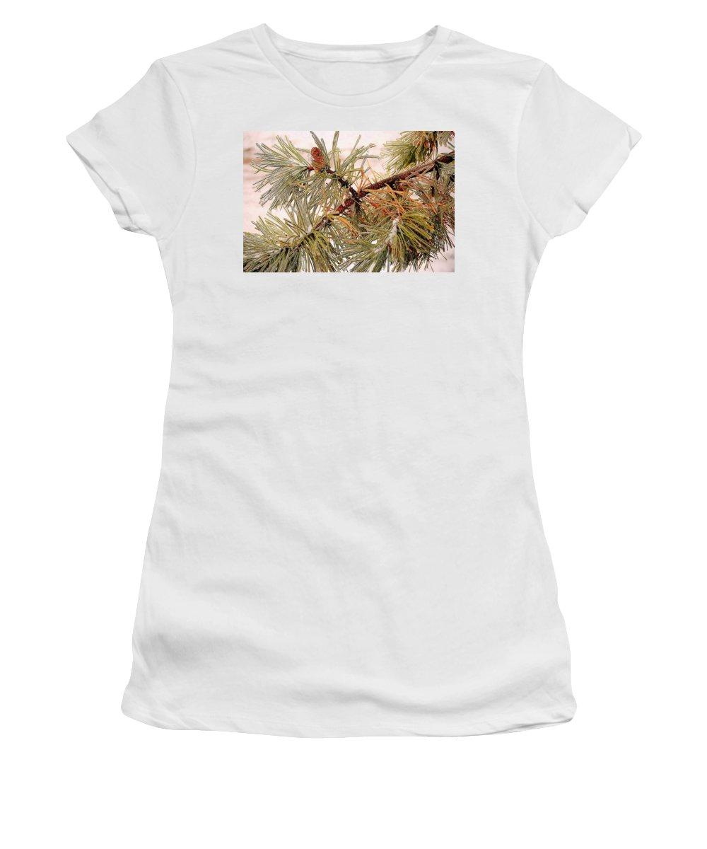 Frozen Women's T-Shirt featuring the photograph Frozen Pine by Frozen in Time Fine Art Photography