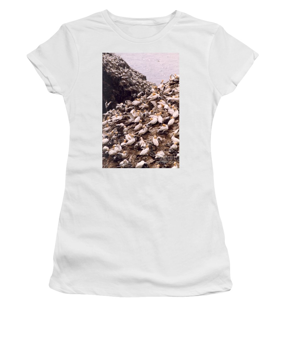 Gannet Women's T-Shirt (Athletic Fit) featuring the photograph Gannet Cliffs by Mary Mikawoz
