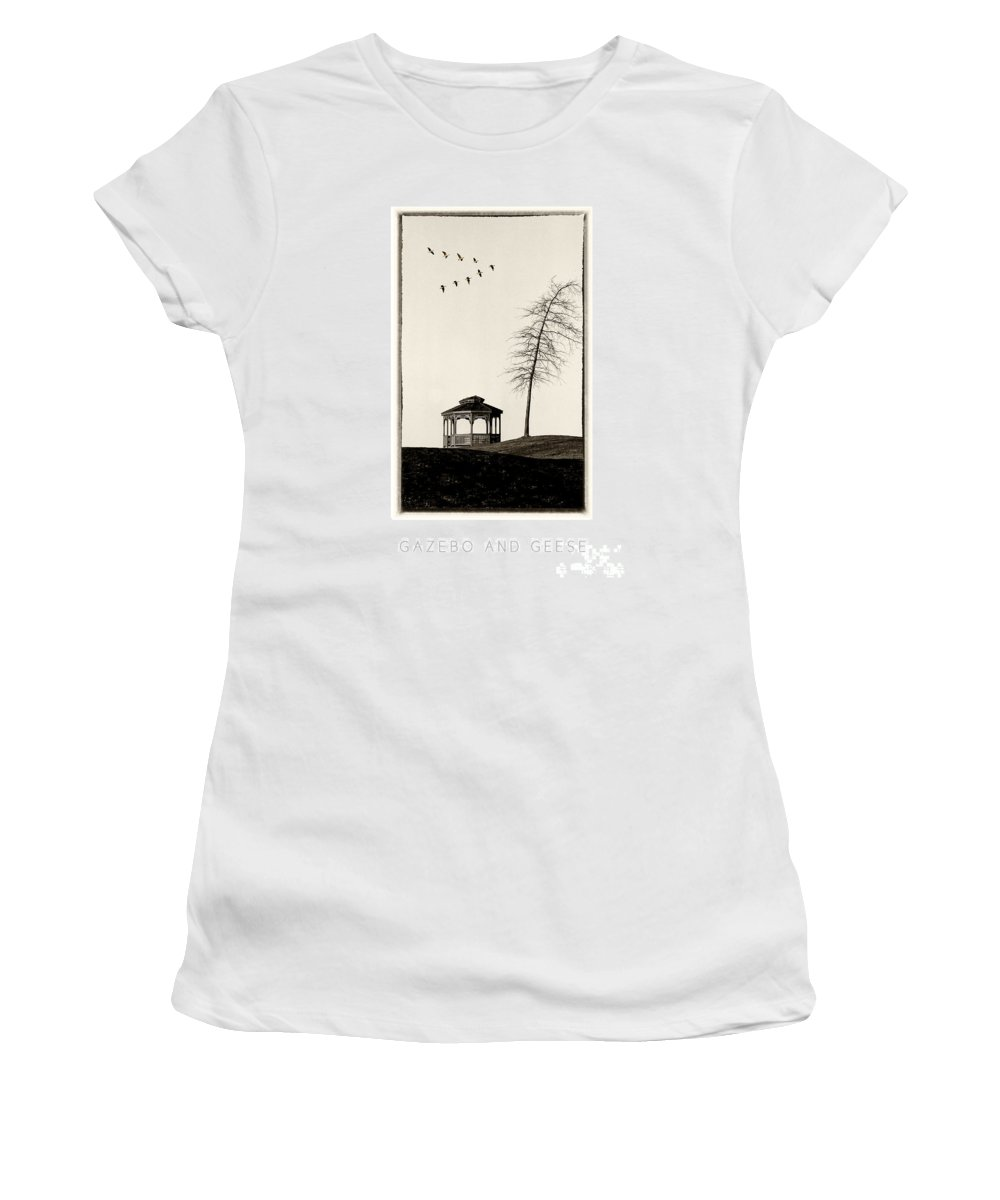 Gazebo Women's T-Shirt featuring the photograph Gazebo And Geese Poster by Mike Nellums