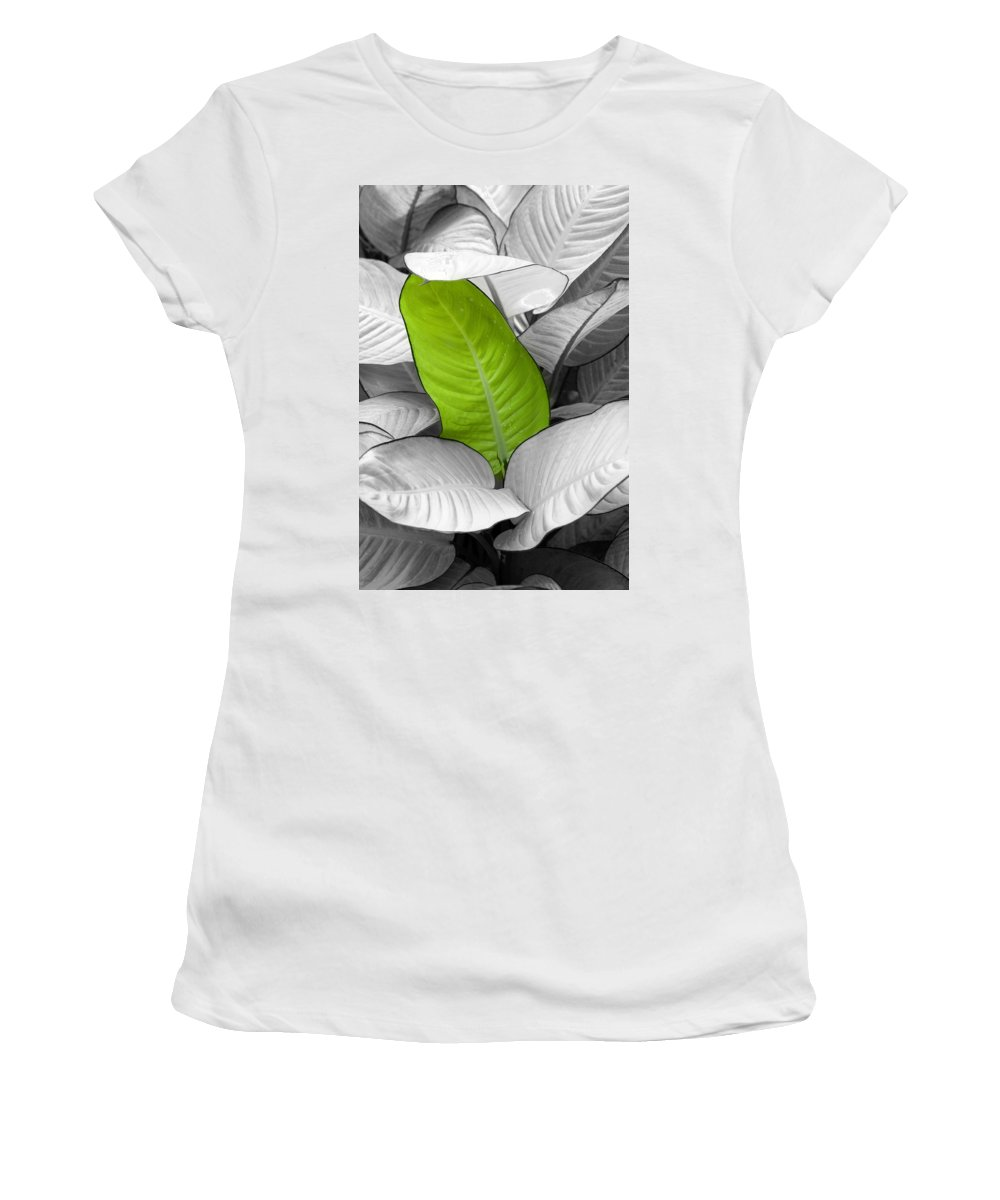Leaf Women's T-Shirt featuring the photograph Going Green Lighter by Marilyn Hunt