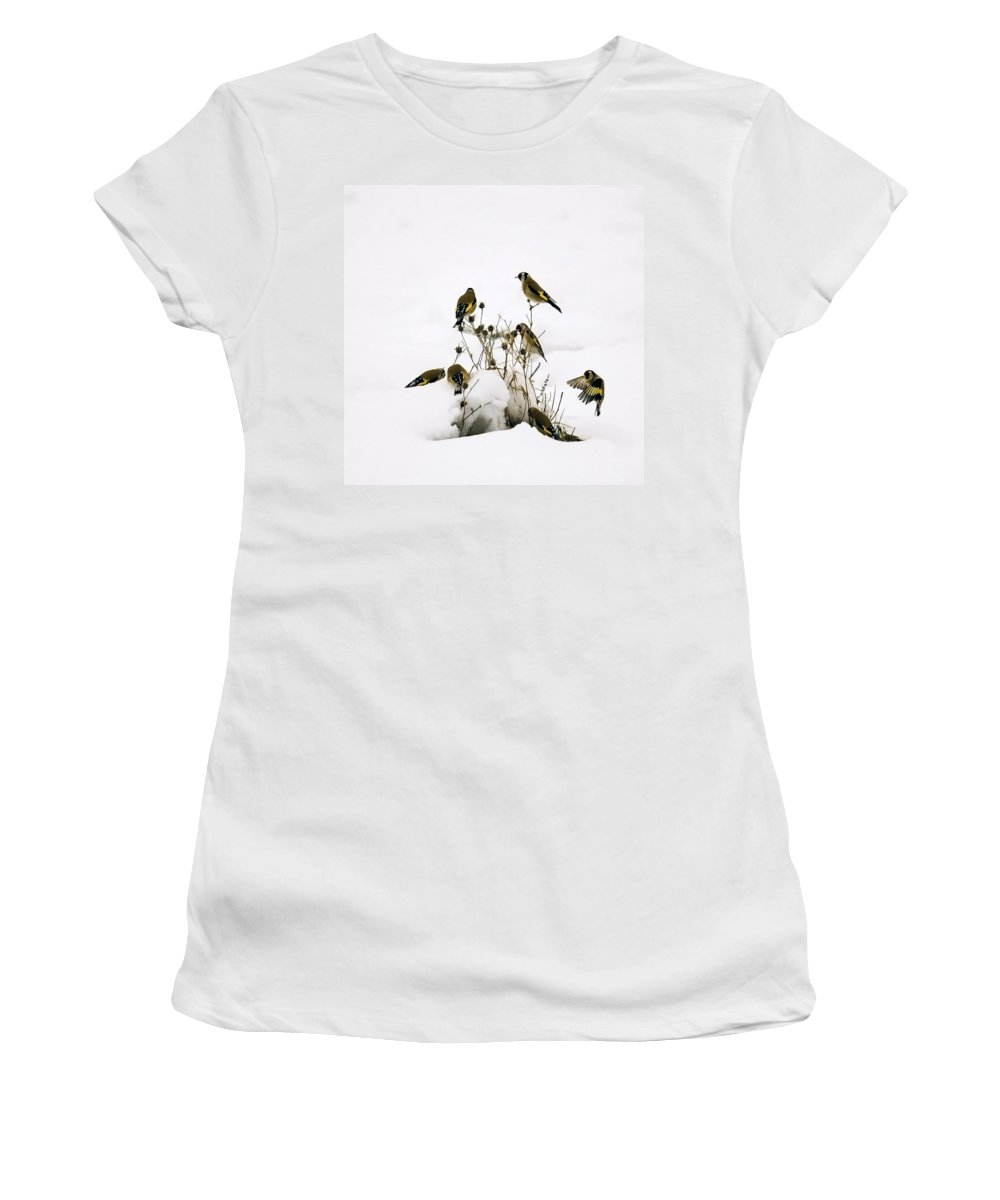 Goldfinches Women's T-Shirt featuring the photograph Gold Finches In Snow by Cliff Norton