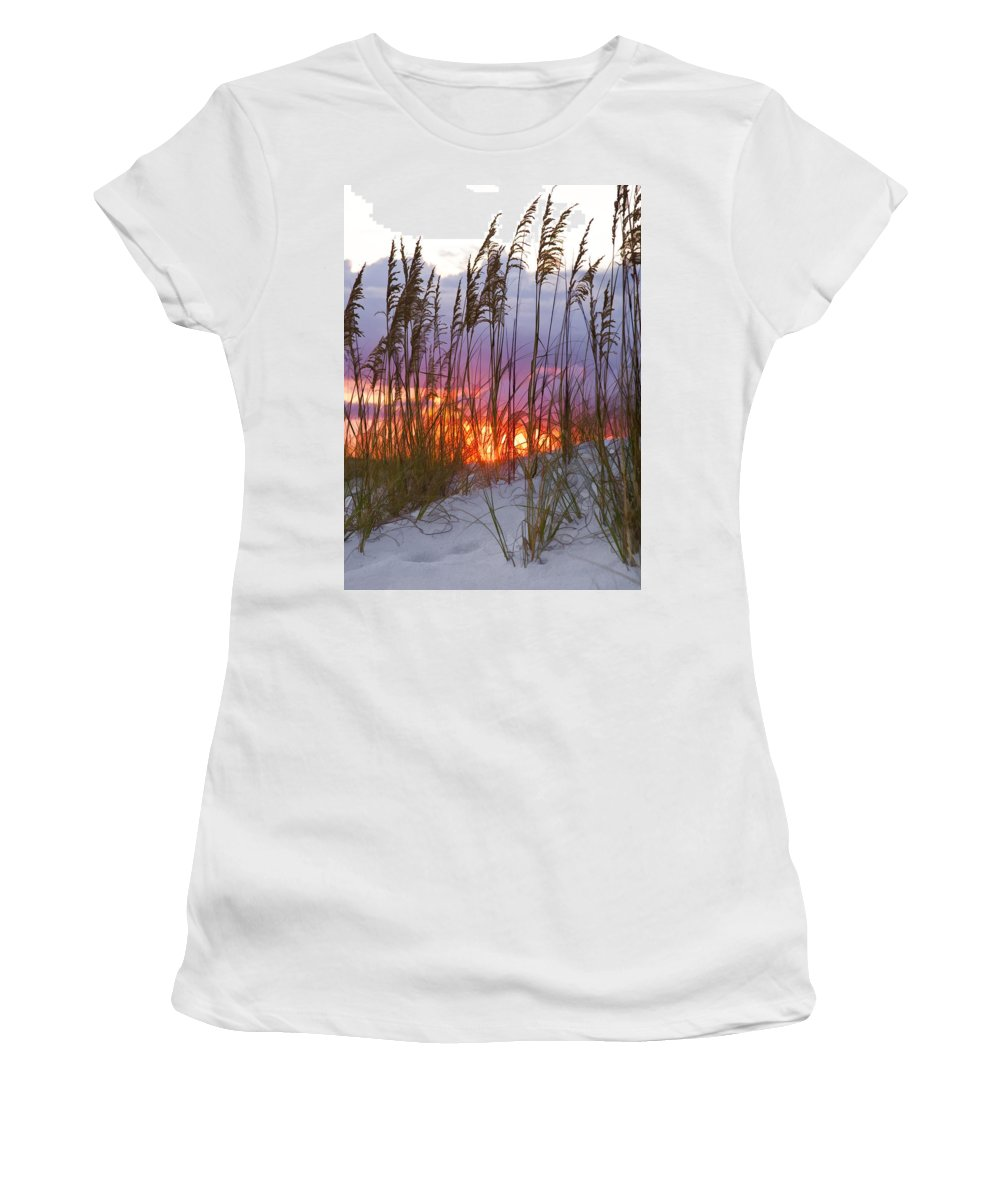 Sea Oats Women's T-Shirt (Athletic Fit) featuring the photograph Golden Amber by Janet Fikar
