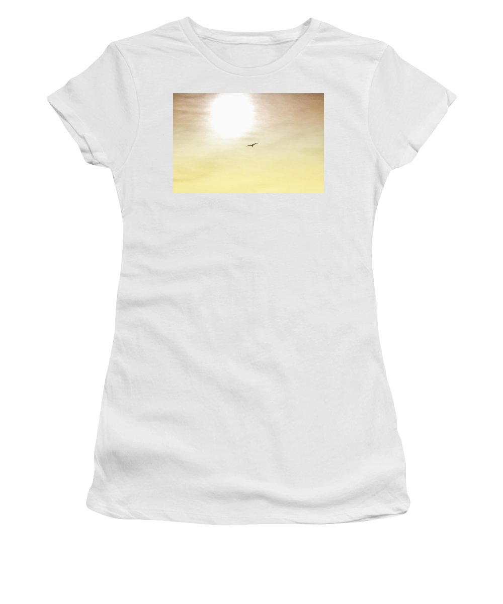 Seagull Women's T-Shirt (Athletic Fit) featuring the photograph Golden Flyer by Bill Cannon