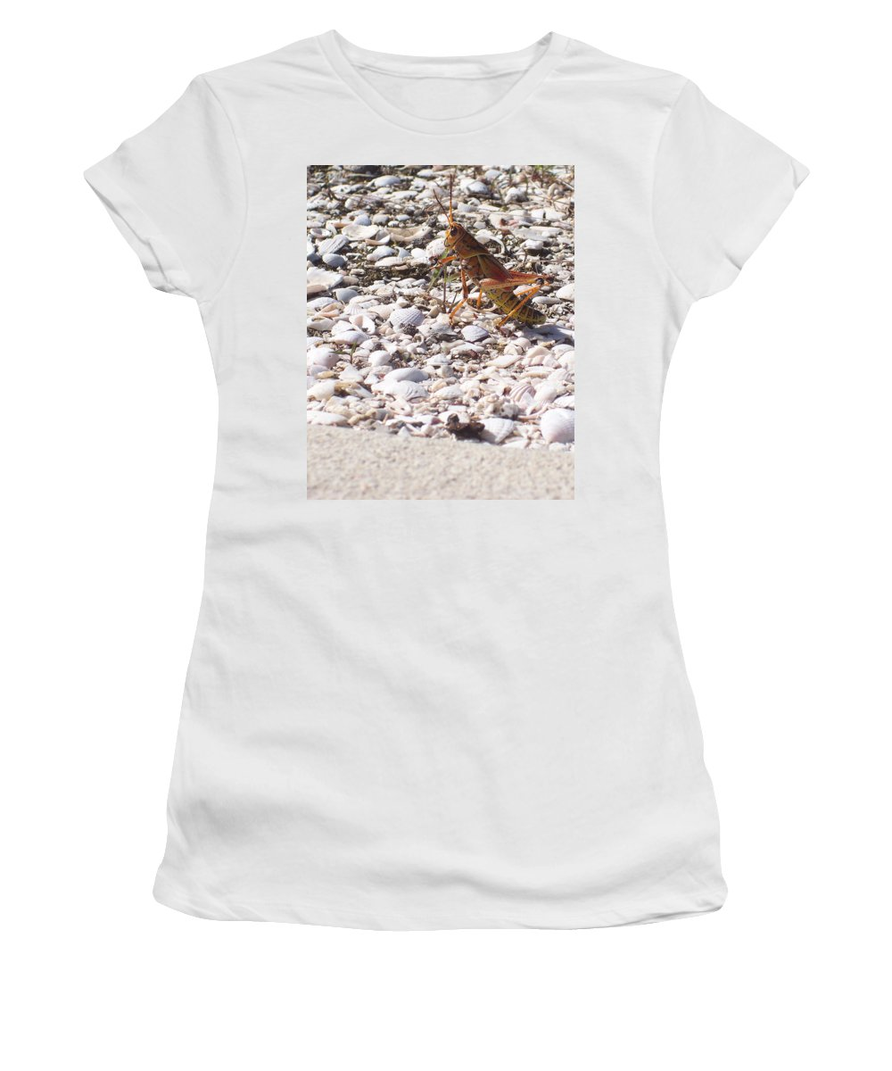 Florida Women's T-Shirt (Athletic Fit) featuring the photograph Grasshopper by Chris Andruskiewicz
