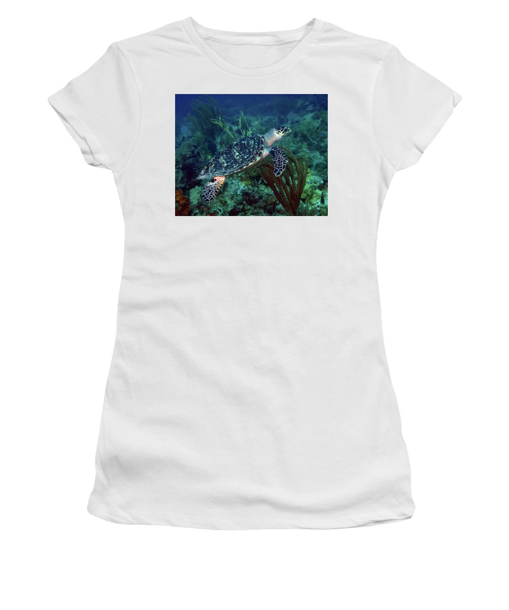 Hawksbill Sea Turtle Women's T-Shirt (Athletic Fit) featuring the photograph Hawksbill Sea Turtle 7 by Pauline Walsh Jacobson