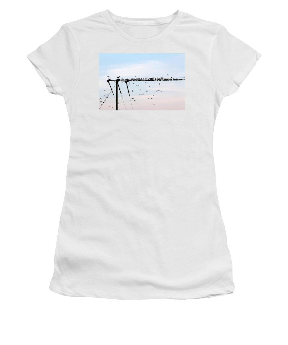 Hitchcock Women's T-Shirt (Athletic Fit) featuring the photograph Hitchcock, The Birds by Dave Philp