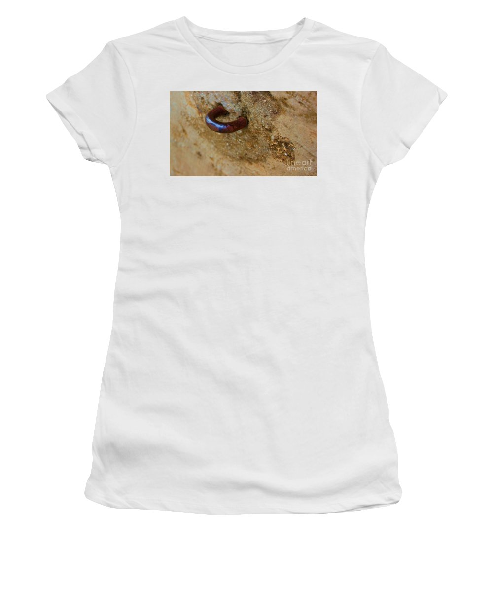 Concrete Women's T-Shirt (Athletic Fit) featuring the photograph Hooked by Debbi Granruth