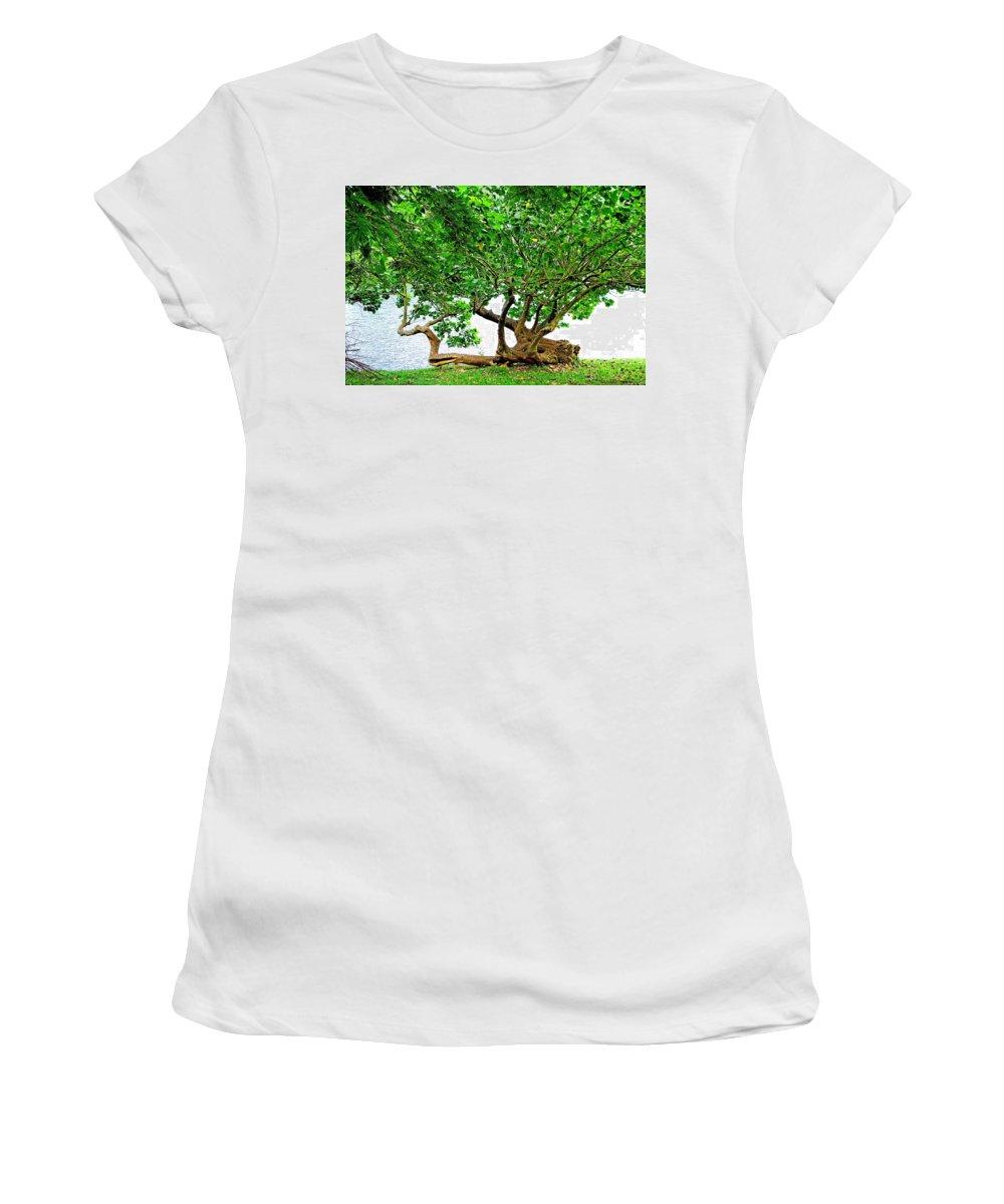 Horizontal Trunk Women's T-Shirt featuring the photograph Horizontal Trunk by Robert Meyers-Lussier