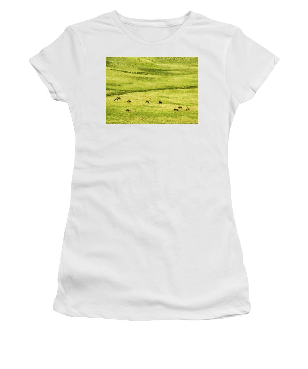 Argentina Women's T-Shirt (Athletic Fit) featuring the photograph Horses by Osvaldo Hamer