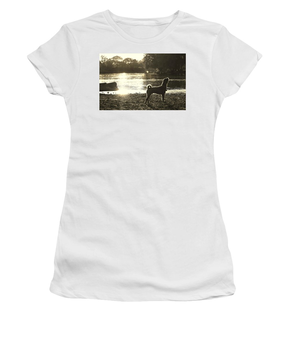 Dog Women's T-Shirt featuring the photograph Howl At The Sun by Denise Irving